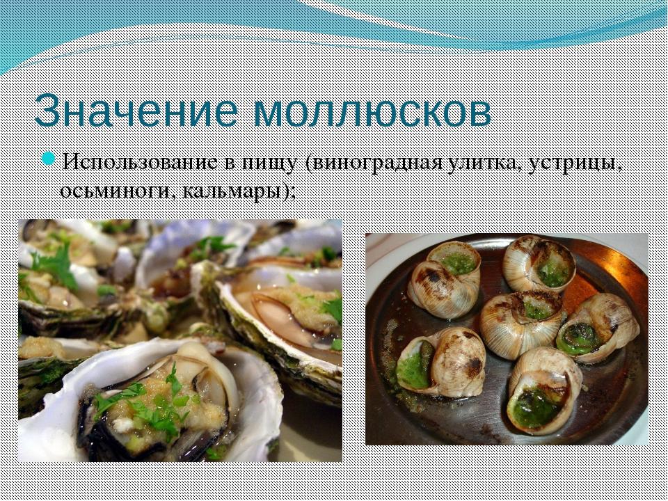 Значение моллюсков Использование в пищу (виноградная улитка, устрицы, осьмино...