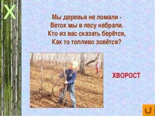 Мы деревья не ломали - Веток мы в лесу набрали. Кто из вас сказать берётся, К
