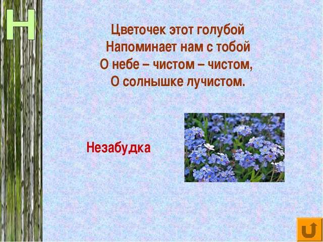 Цветочек этот голубой Напоминает нам с тобой О небе – чистом – чистом, О солн...