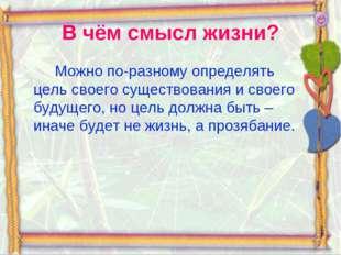 В чём смысл жизни? Можно по-разному определять цель своего существования и