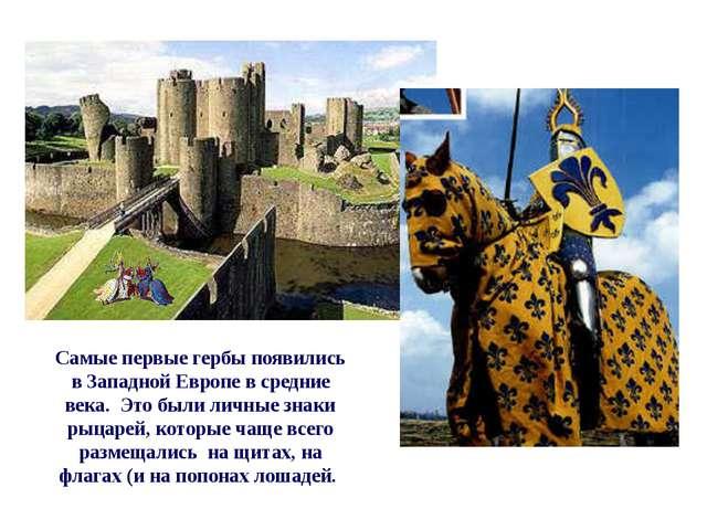 Самые первые гербы появились в Западной Европе в средние века. Это были личн...