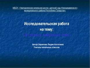 МБОУ «Чертушкинская начальная школа –детский сад»Новошешминского муниципально
