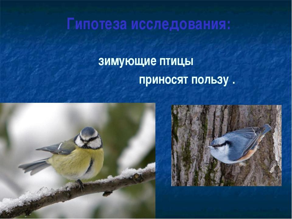 Гипотеза исследования: зимующие птицы приносят пользу .