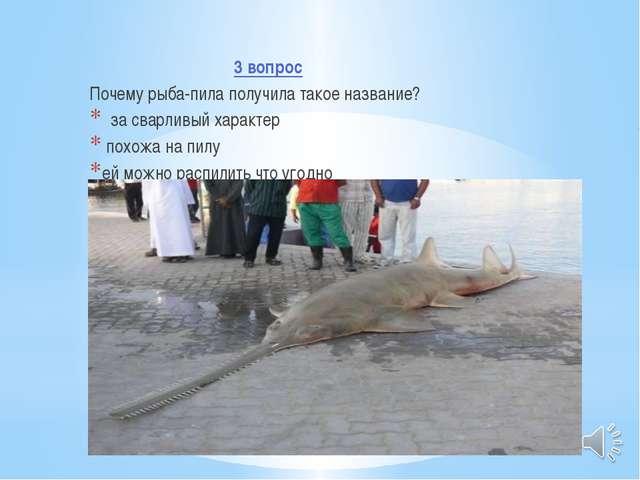 3 вопрос Почему рыба-пила получила такое название? за сварливый характер пох...
