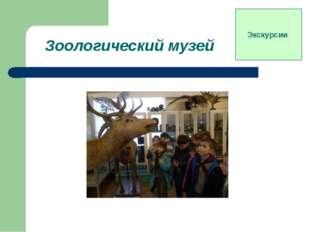 Зоологический музей Экскурсии