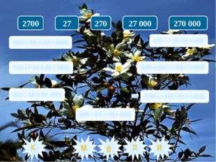 28 · 51 : 17; 102 : 17 · 51; 96 : 12 · 4; 48 : 24 · 12. 369 · 4 : 12; 27 · 10