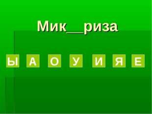 Мик__риза Ы А О У И Я Е