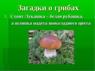 Загадки о грибах Стоит Лукашка – белая рубашка, а шляпка надета шоколадного ц