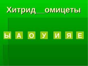 Хитрид__омицеты Ы А О У И Я Е