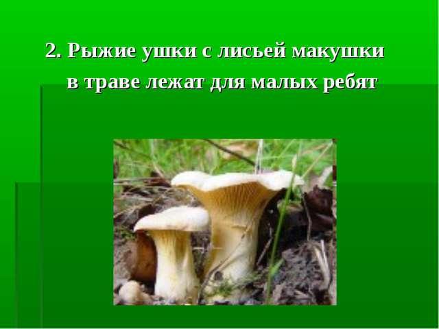 2. Рыжие ушки с лисьей макушки в траве лежат для малых ребят
