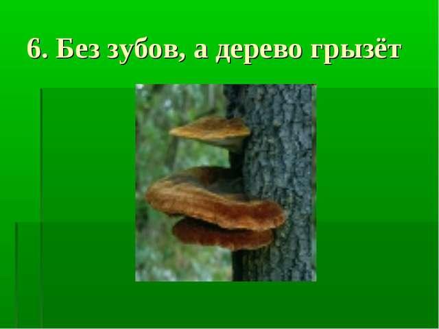 6. Без зубов, а дерево грызёт