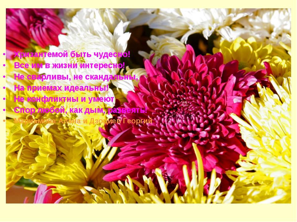 Хризантемой быть чудесно! Все им в жизни интересно! Не сварливы, не скандальн...
