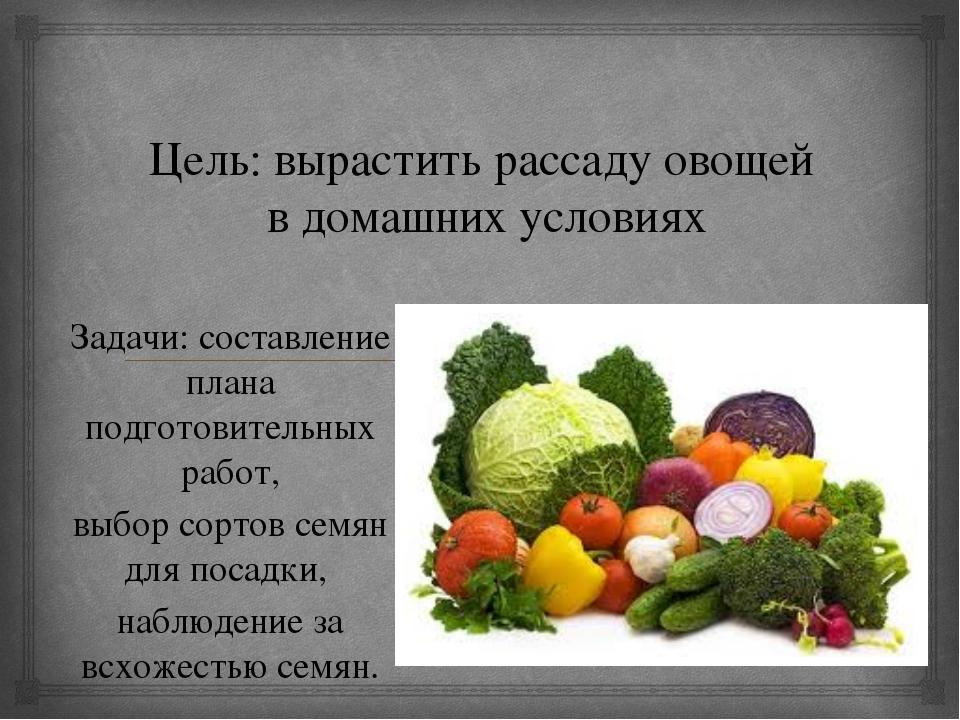 Цель: вырастить рассаду овощей в домашних условиях Задачи: составление плана...