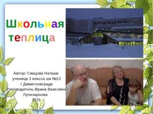Автор: Сикцова Наташа ученица 3 класса шк №13 г Димитоовграда Руководитель Ир