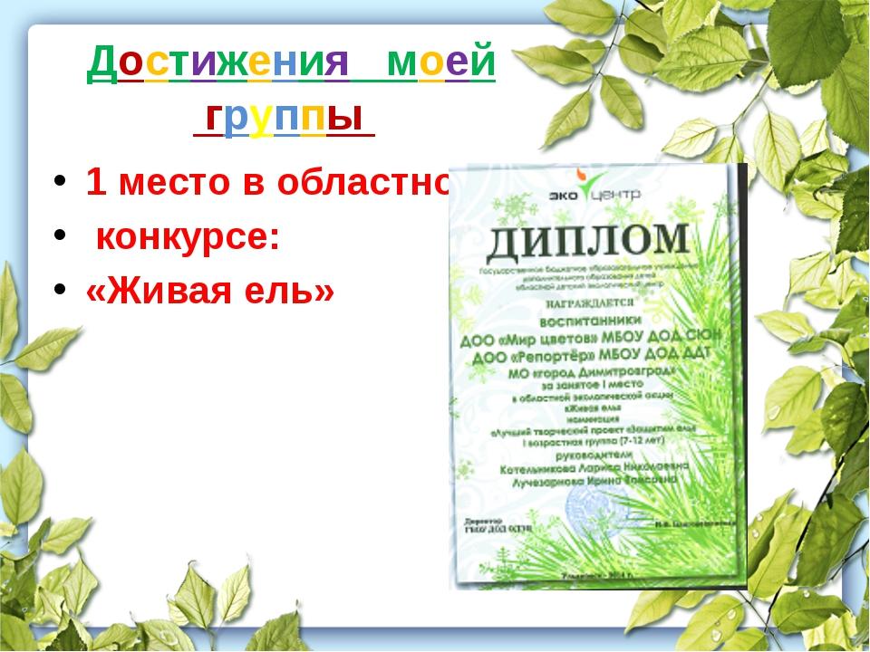 Достижения моей группы 1 место в областном конкурсе: «Живая ель»
