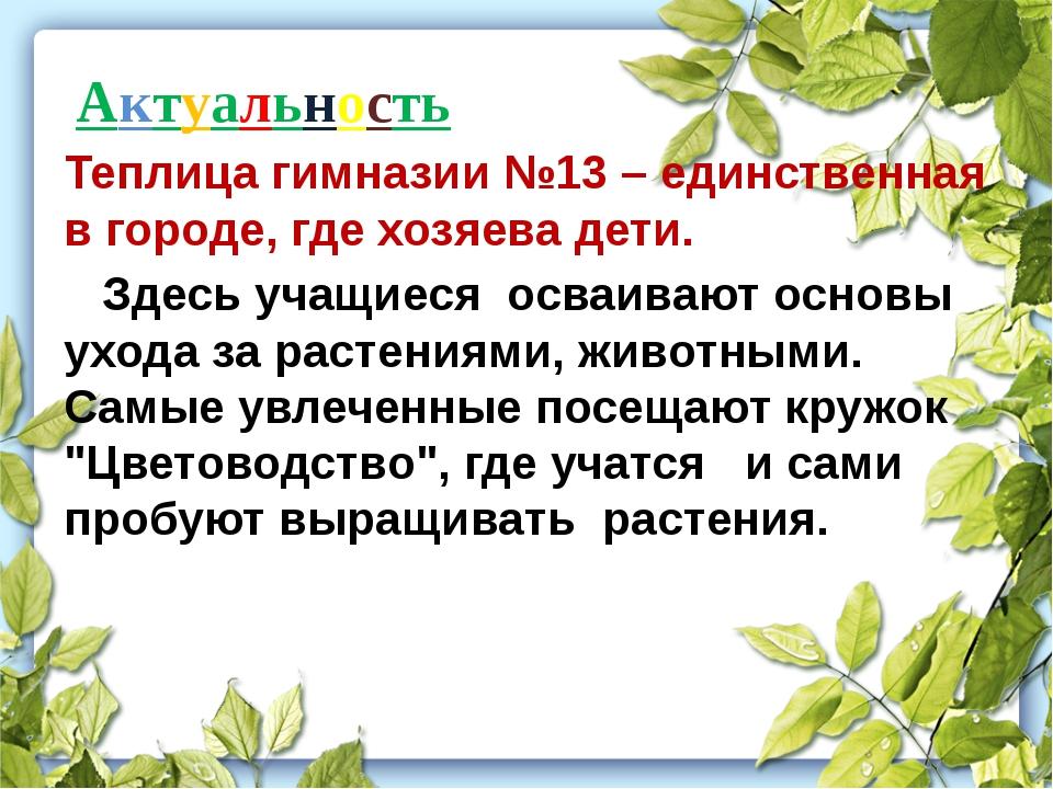 Актуальность Теплица гимназии №13 – единственная в городе, где хозяева дети....