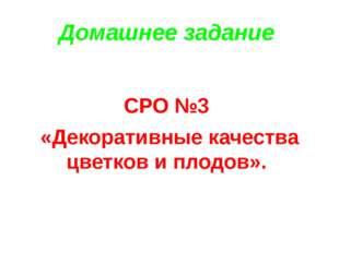 Домашнее задание СРО №3 «Декоративные качества цветков и плодов».