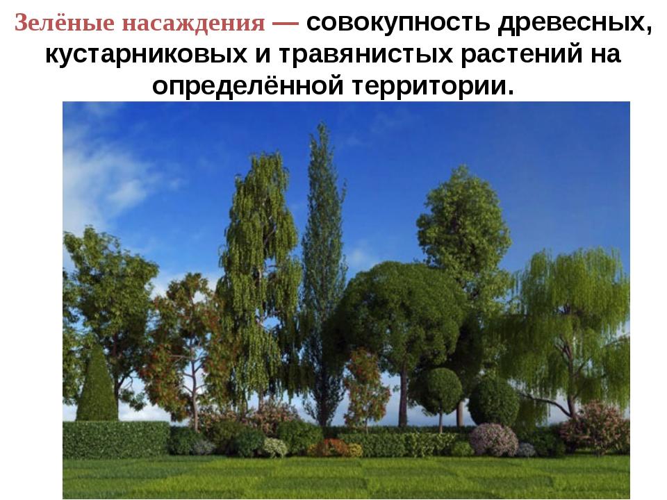 Зелёные насаждения — совокупность древесных, кустарниковых и травянистых раст...