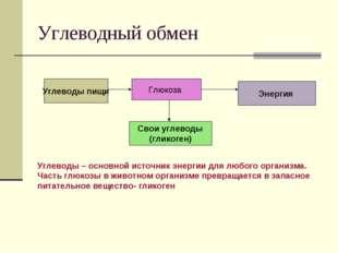 Углеводный обмен Углеводы пищи Глюкоза Свои углеводы (гликоген) Энергия Углев