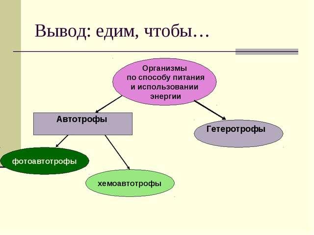 Вывод: едим, чтобы… Организмы по способу питания и использовании энергии хемо...