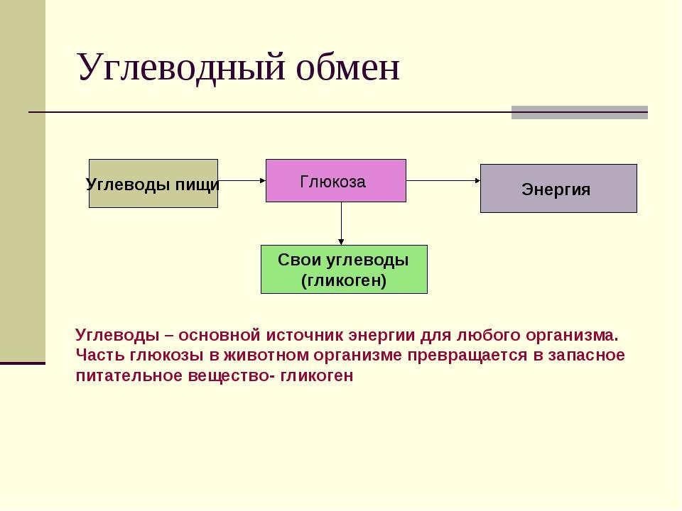 Углеводный обмен Углеводы пищи Глюкоза Свои углеводы (гликоген) Энергия Углев...