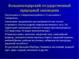 Большехехцирский государственный природный заповедник Расположен в Хабаровско