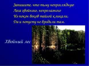 Хвойный лес Запишите, что тьму непроглядную Леса хвойного, непролазного Из по