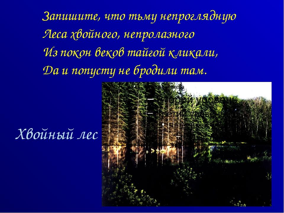 Хвойный лес Запишите, что тьму непроглядную Леса хвойного, непролазного Из по...