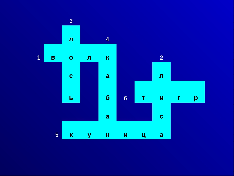 3 л 4 1 в о л к 2 с а л ь б 6 т и г р а с 5 к у н и ц а