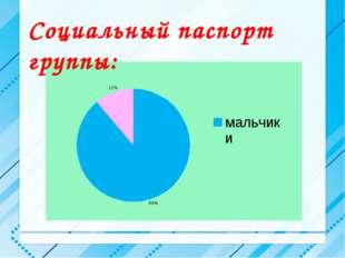 Социальный паспорт группы: