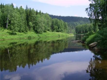 Успехи и поражения года Экооборона Московской области