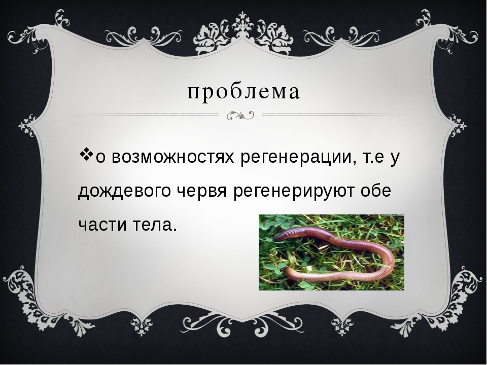 проблема о возможностях регенерации, т.е у дождевого червя регенерируют обе ч...