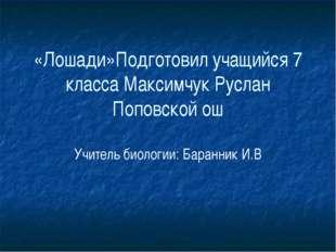 «Лошади»Подготовил учащийся 7 класса Максимчук Руслан Поповской ош Учитель би