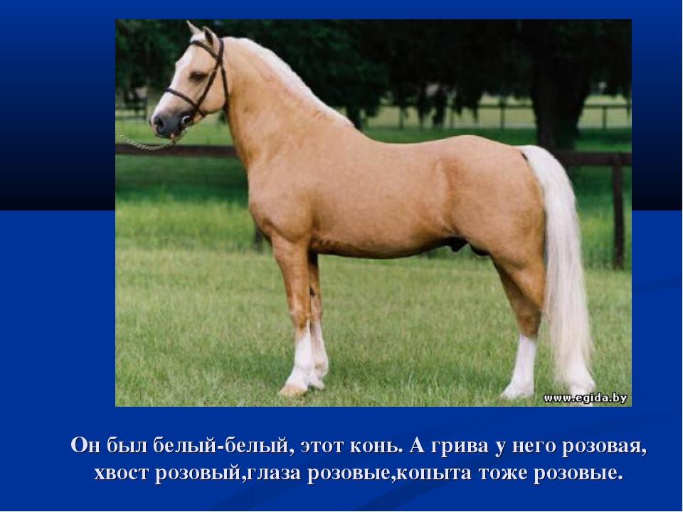 Он был белый-белый, этот конь. А грива у него розовая, хвост розовый,глаза ро...