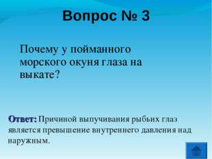 Вопрос № 3 Почему у пойманного морского окуня глаза на выкате? Ответ: Причино