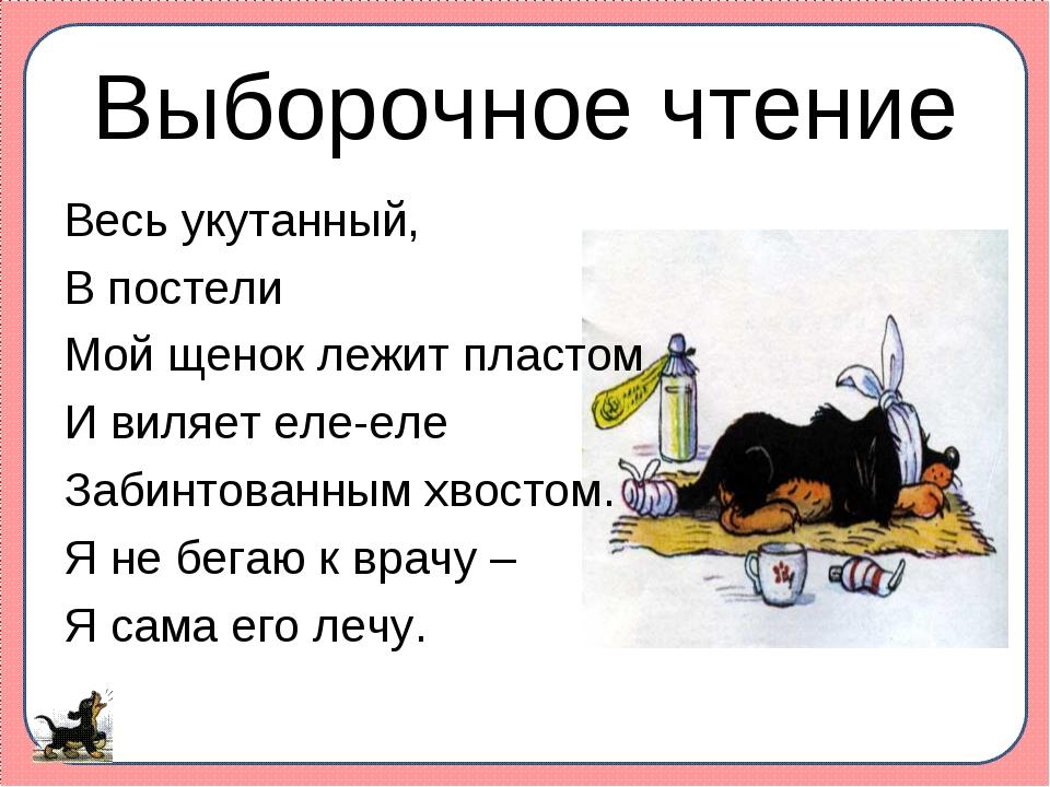Выборочное чтение Весь укутанный, В постели Мой щенок лежит пластом И виляет...