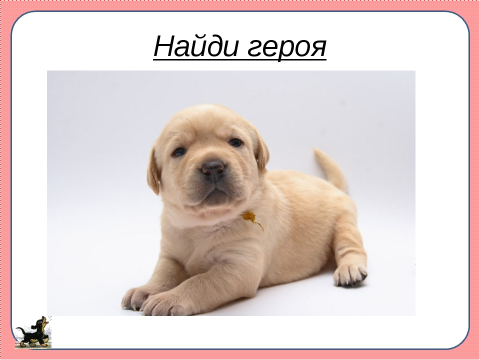 Найди героя САЩР ФВЕМ ГОНК ЛЕОН АЗКЛ