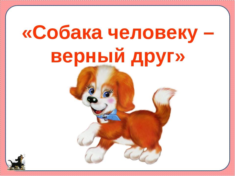 «Собака человеку – верный друг»