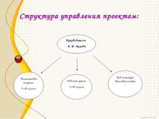Структура управления проектом: Руководитель Л. В. Лунева Инициативная группа