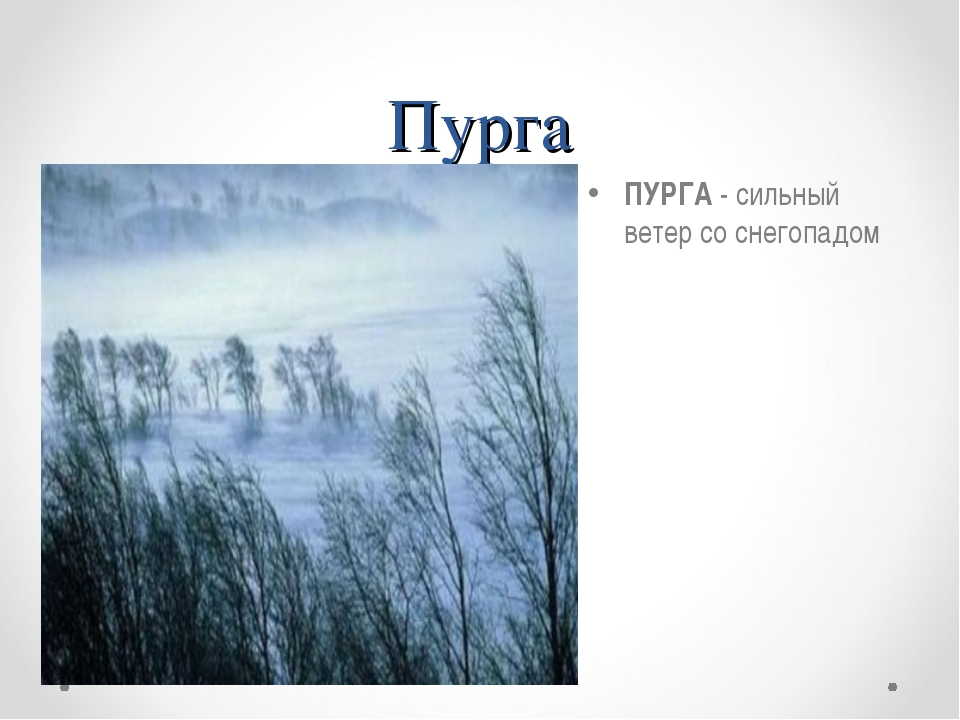 Пурга ПУРГА - сильный ветер со снегопадом