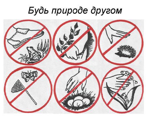 http://festival.1september.ru/articles/610235/Image6747.jpg