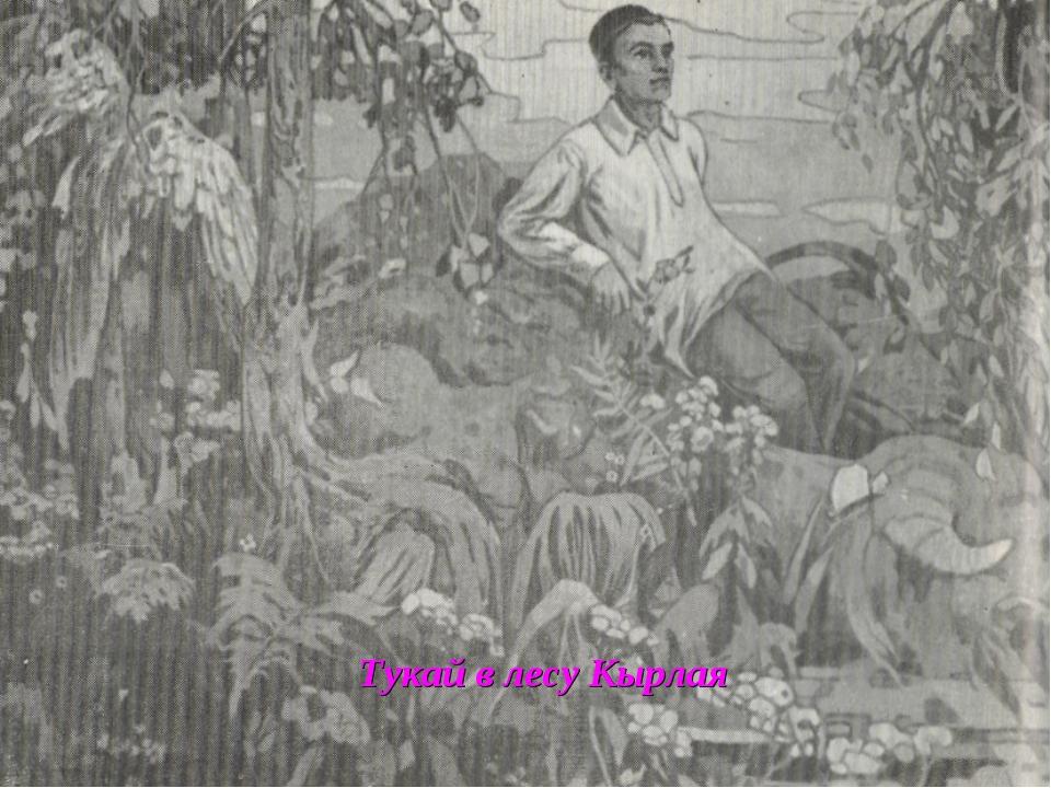 Тукай в лесу Кырлая