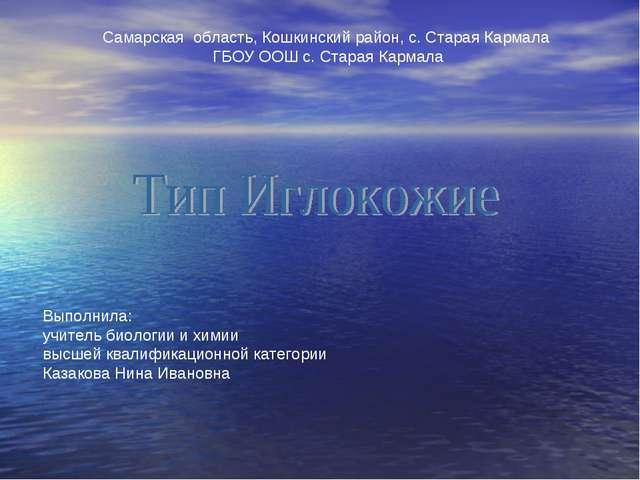 Самарская область, Кошкинский район, с. Старая Кармала ГБОУ ООШ с. Старая Кар...