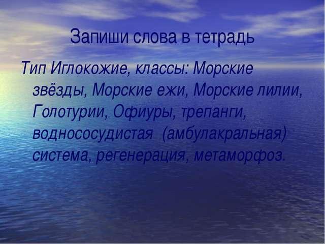 Запиши слова в тетрадь Тип Иглокожие, классы: Морские звёзды, Морские ежи, Мо...