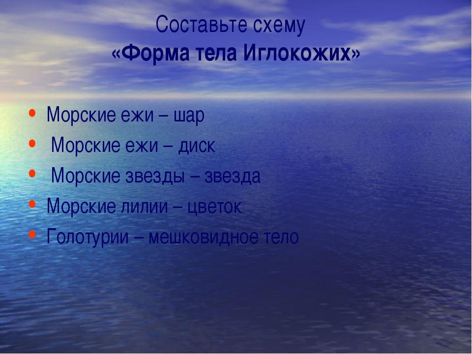 Составьте схему «Форма тела Иглокожих» Морские ежи – шар Морские ежи – диск М...