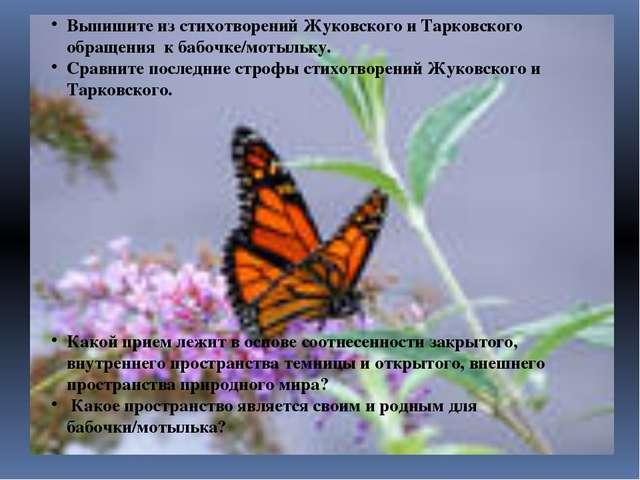 Выпишите из стихотворений Жуковского и Тарковского обращения к бабочке/мотыль...