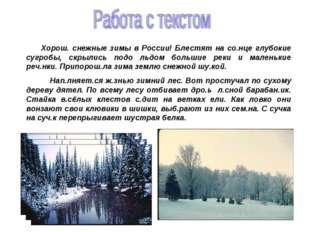 Хорош. снежные зимы в России! Блестят на со.нце глубокие сугробы, скрылись п