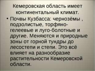 Кемеровская область имеет континентальный климат. Почвы Кузбасса: чернозёмы ,