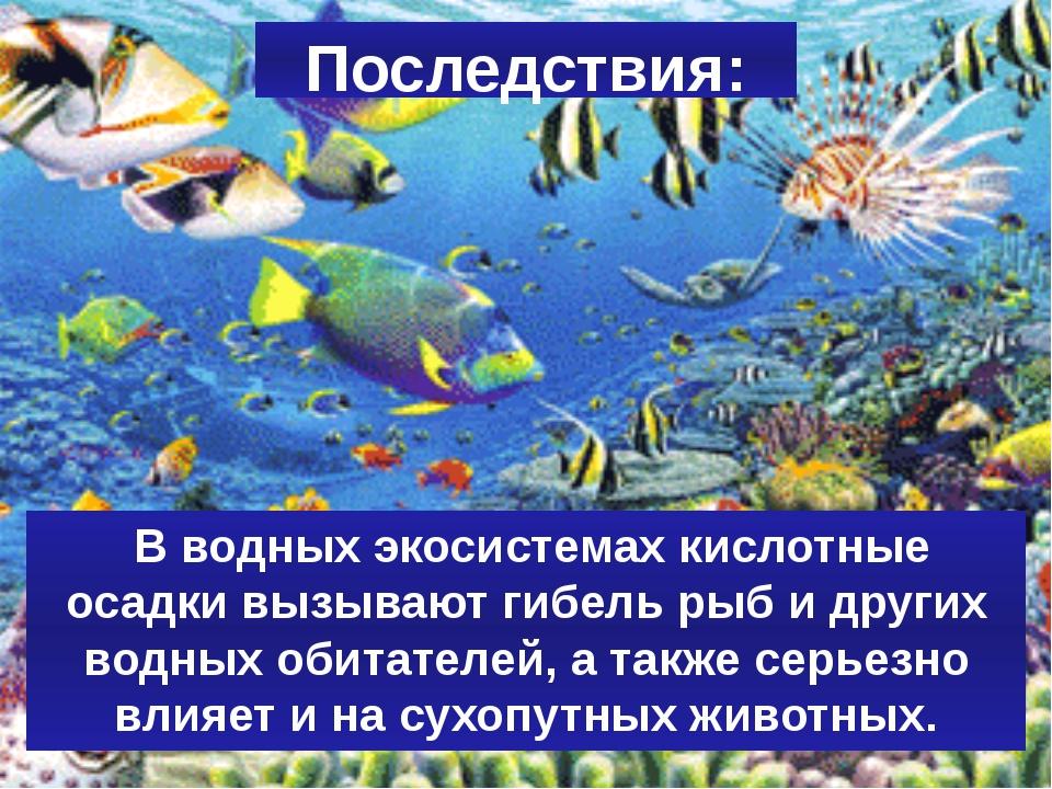 Последствия: В водных экосистемах кислотные осадки вызывают гибель рыб и друг...