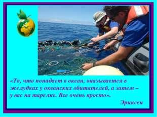«То, что попадает в океан, оказывается в желудках у океанских обитателей, а з